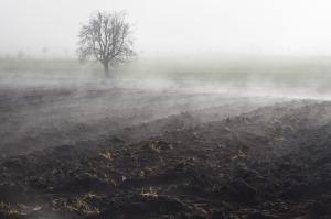fog-66270_640 (1)