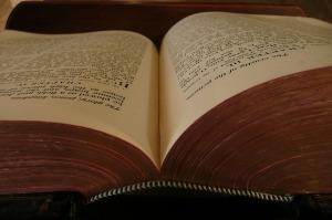 livre ouvert (1)