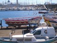 barque de joute