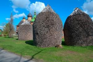 estonia-96312_1280