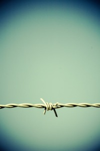 barbed-wire-606977_1280