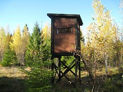 autumn-hunting-towers-208101__180