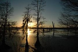 bayou-912244__180