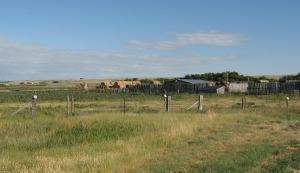 farm-174177_1280